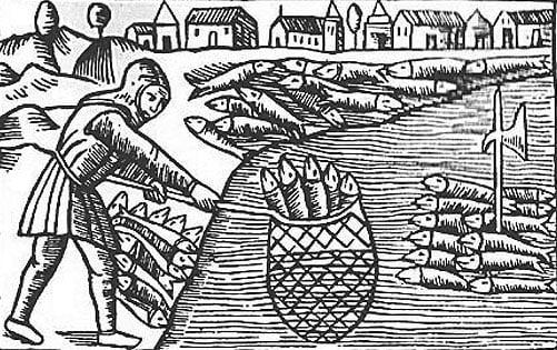 1540-1570 var sildefisket mest aktivt utenfor vestkysten av Bergen, mens det mot slutten av århundret hadde flyttet seg til Trondheim. I periodene i mellom de store fisketoppene var utbyttet så lite som en hundrededel av hva man kunne oppnå når fisket var på sitt beste. Trestikket er fra den svenske biskopen og historikeren Olaus Magnuss store verk om de nordiske landenes historie Historia de Gentibus Septentrionalibus, først utgitt i Roma i 1555. Bilde: Ingen opphavsrett grunnet alder.
