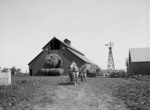Fotografi fra det som muligens er en norsk-amerikansk gård i USA fra 1893 tatt av den kjente fotografen Knud Knudsen. Kilde: Universitetet i Bergen